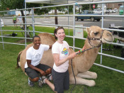 Kronda and Jess with a Camel on Cycle Oregon
